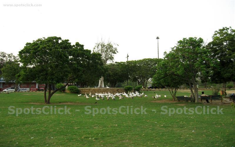 Hill Park Photo