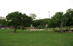 Picture of Hill Park