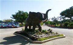 Image of Karachi Safari Park