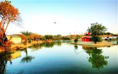 Pics of Karachi Safari Park