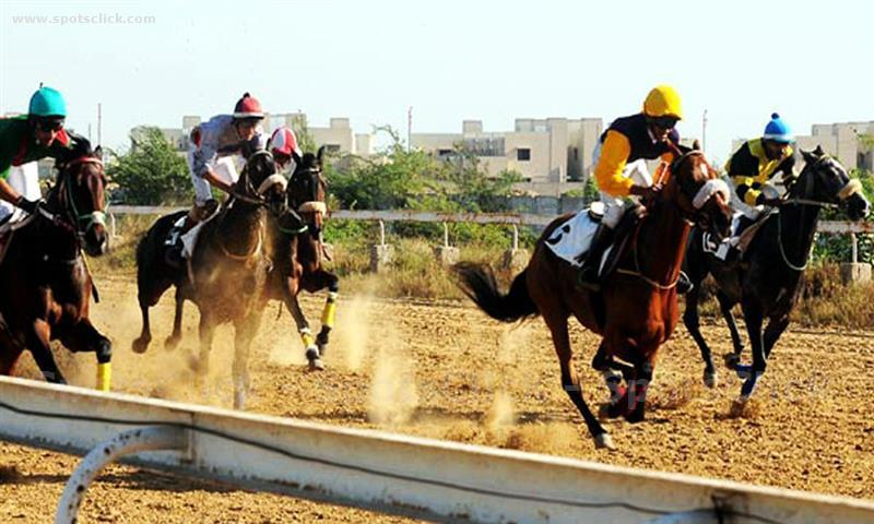 Gallery of Karachi Race Club