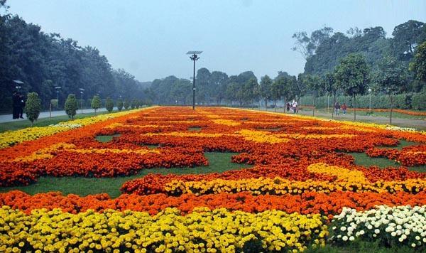 Jilani Park Image