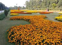Picture of Jilani Park