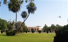 Pics of Kamran Baradari