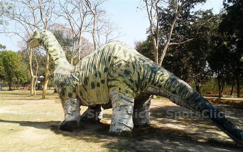 Lahore Zoo Safari Park Gallery