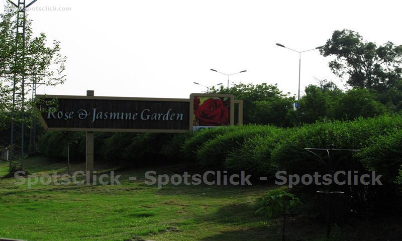 Rose & Jasmine Garden Photo