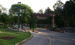 Image of Daman-e-Koh