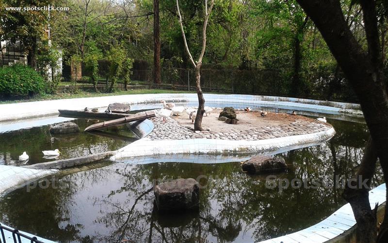 Gallery of Islamabad Zoo
