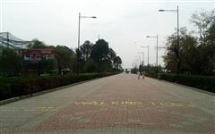 Image of Lake View Park