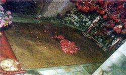 Picture of Qadam Gah Mola Ali