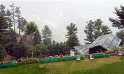 Picture of Bara Gali