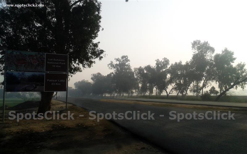 Lal Suhanra National Park Image