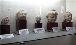 Pics of Peshawar Museum