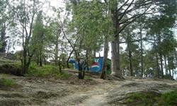 Gallery of Shimla Hill