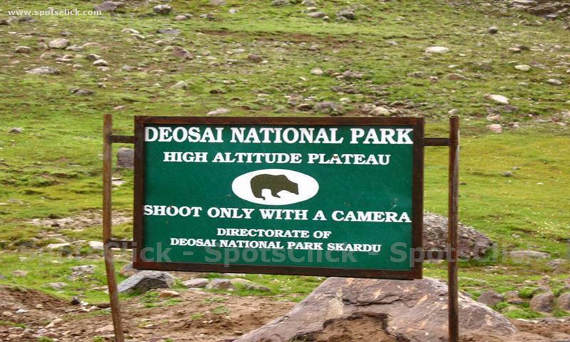 Deosai National Park Image