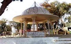 Pics of Bhit Shah