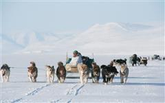 Gallery of Greenland Island