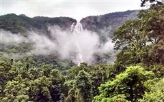 Dudhsagar Waterfall Picture