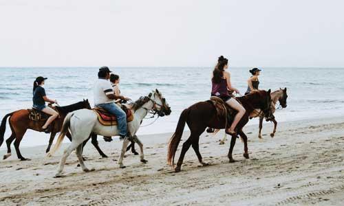 horse-riding-on-beach.jpg